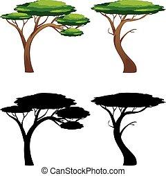 silhouettes, träd