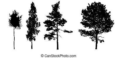 silhouettes tree on white background