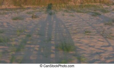 silhouettes, vélo, sable, homme
