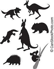 silhouettes, van, australiër, dieren