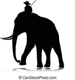 silhouettes, vecteur, éléphant, homme