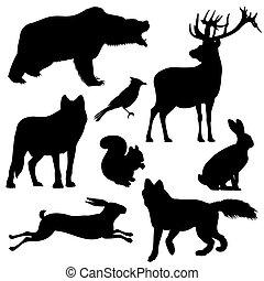 silhouettes, vecteur, animaux, forêt, ensemble