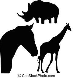 silhouettes, vecteur, animaux