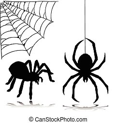 silhouettes, vecteur, araignés, deux
