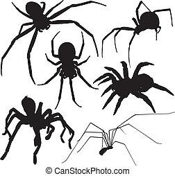 silhouettes, vecteur, araignés