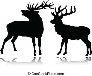silhouettes, vecteur, cerf