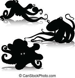 silhouettes, vecteur, poulpe