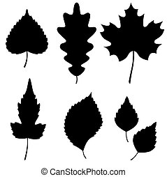 silhouettes, vector, blad, verzameling