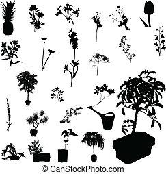 silhouettes, vector, bloem