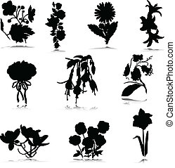 silhouettes, vector, bloemtuin