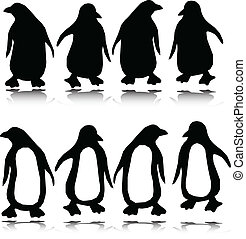 silhouettes, vector, penguin