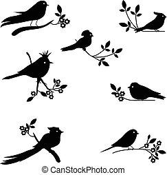 silhouettes, vector, vogel, verzameling