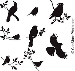 silhouettes, vector, vogel, verzameling