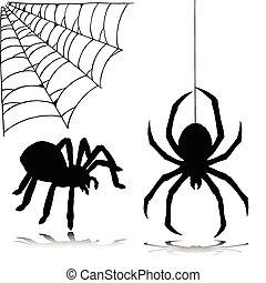 silhouettes, vektor, spindel, två