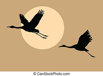 silhouettes, vliegen, kranen, op achtergrond, zon