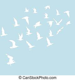 silhouettes, vliegende vogels