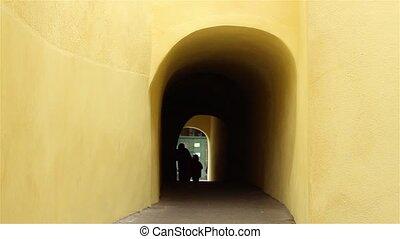 Silhouettes Walking Through Dark Tu