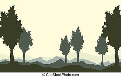 silhoutte, arbre, colline, paysage