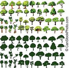 silhoutte, de, árvores