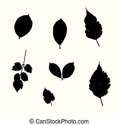 Silhoutte of leaves - Set of silhoutte leaves. Vector...