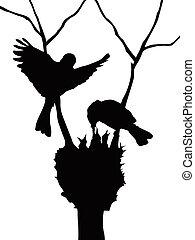 silhuet, fugle, familie