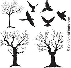 silhuet, træ 3, fugle, vektor