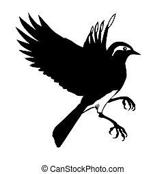 silhuet, vektor, baggrund, lille, hvid fugl