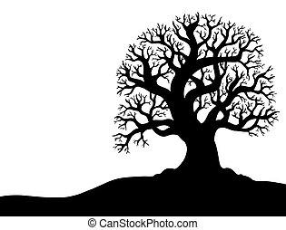 silhueta árvore, sem, folha, 1