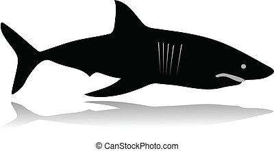silhueta tubarão