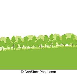silhuetas, árvores, floresta, paisagem
