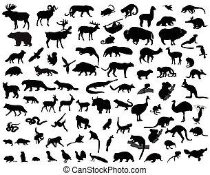 silhuetas, animais