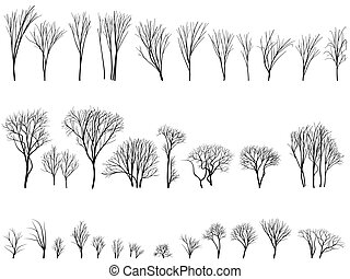 silhuetas, bushes., árvores