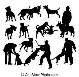 silhuetas, cão policial, atividade
