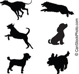 silhuetas, cão