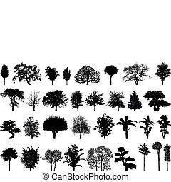 silhuetas, de, árvores