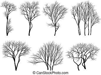 silhuetas, de, árvores, sem, folhas