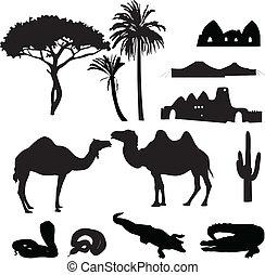 silhuetas, de, africano, deserto