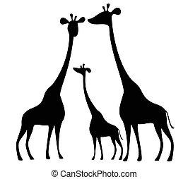 silhuetas, de, girafas