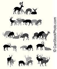 silhuetas, deers, grupos, isolado