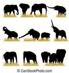 silhuetas, jogo, elefantes