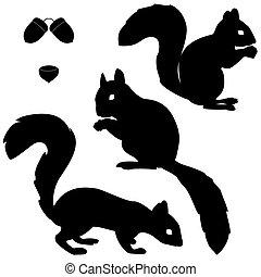 silhuetas, jogo, esquilos