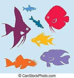 silhuetas, jogo, peixe, coloridos, aquário
