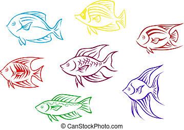 silhuetas, peixe, aquário
