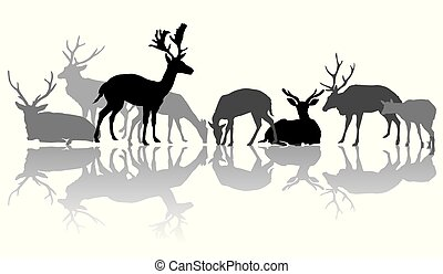 silhuetas, reflexão, deers