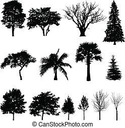 silhuetas, trees'