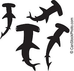 silhuetas, tubarão hammerhead