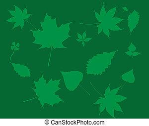 silhuetas, verde sai