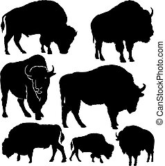 silhuetas, vetorial, búfalo