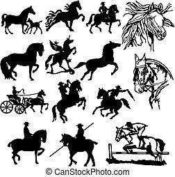 silhuetas, vetorial, cavalo, -