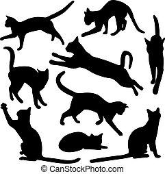 silhuetas, vetorial, cobrança, gato